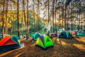 Settle Outdoor - Essentials for Outdoor Adventure - Tents in a Camping Ground