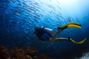 Settle Outdoor - Scuba Diving vs Snorkeling - Scuba Diving